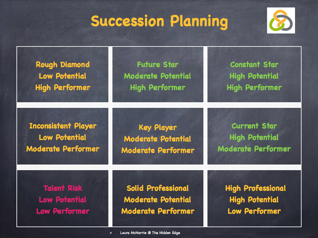 succession planning case study Upper-level undergraduate students will engage in a case study about succession planning management - specifi cally at the executive level in a highly public situation—and job analysis.