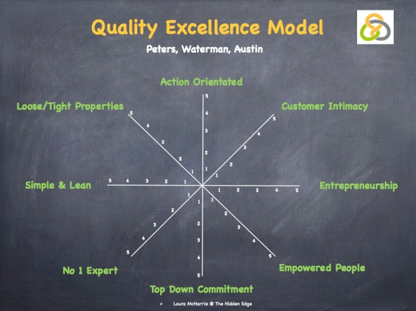 Quality Excellence Model.001