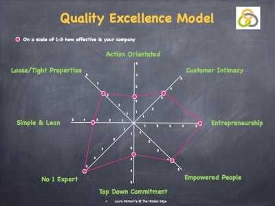 Quality Excellence Model.003