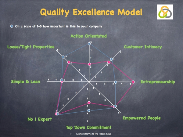 Quality Excellence Model image.001