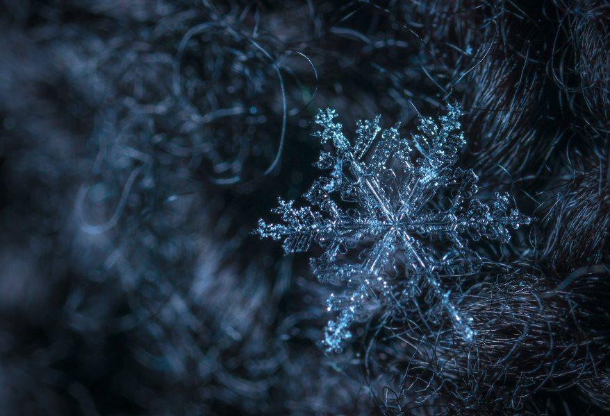 macro-photography-of-snowflake-813871