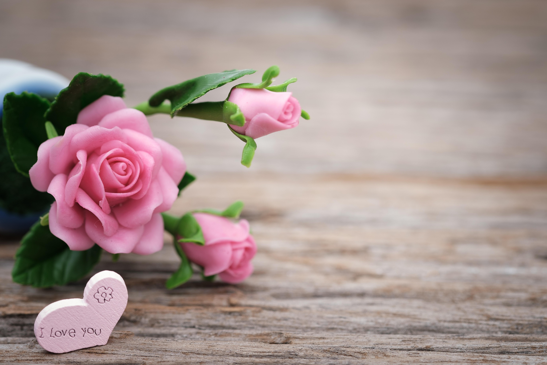 shallow-focus-photo-of-pink-ceramic-roses-1028707